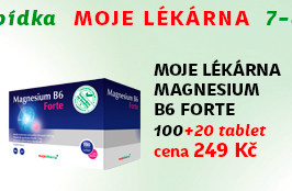 Moje lékárna Magnesium B6 Forte 100+20 tablet