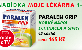 Paralen Grip horký nápoj Echinacea a šípky 12 sáčků 500mg/10mg