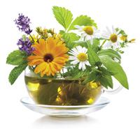 Čaj, nečaj, bylinný čaj
