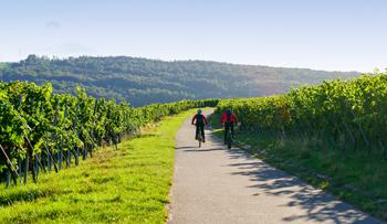 Podzimní výlety do přírody autem, na kole i pěšky